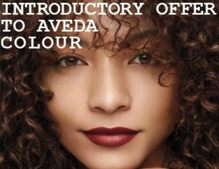 Introductory Offer to Aveda Colour