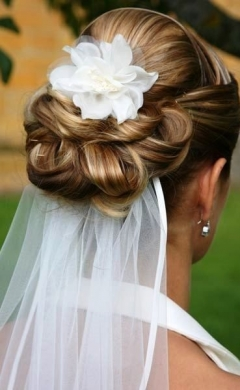 wedding upstyle with veil, Hale hair salon